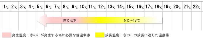 fuyujimeji_grow.jpg