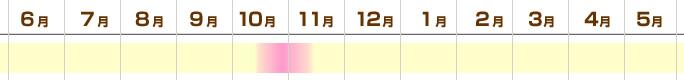 kuritake_outb.jpg