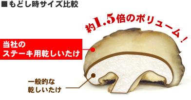 modoshi_volume.jpg